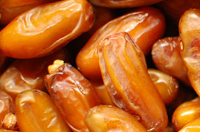 Fresh Deglet Noor Dates