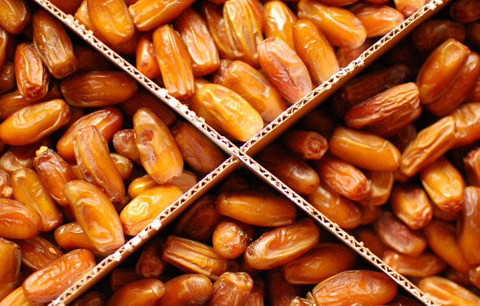 Deglet Noor Dates | 7HOTDATES Organically Grown by the Bautista Family